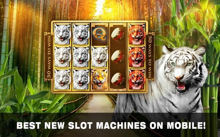 Slots Tiger King Casino Slots 9 تصوير الشاشة