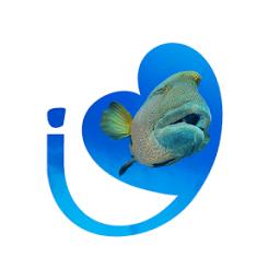 Feel - TheMustOfTheSea icon