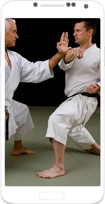 Karate Shotokan 3 تصوير الشاشة