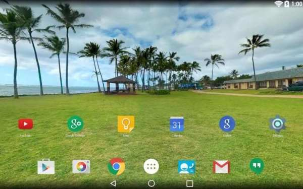 Panorama Wallpaper: Palms screenshot 8