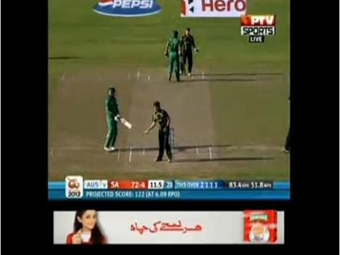 Cricket Live 24/7 screenshot 3