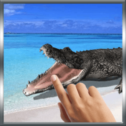 Biting Crocodile LWP أيقونة