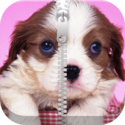 Cute Puppy Zipper Screen Lock أيقونة