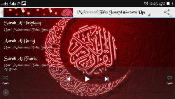 Murottal by Taha Junayd 4 تصوير الشاشة
