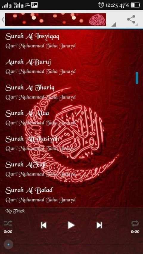 Murottal by Taha Junayd 1 تصوير الشاشة