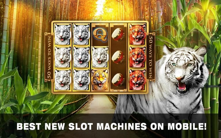 Slots Tiger King Casino Slots 4 تصوير الشاشة