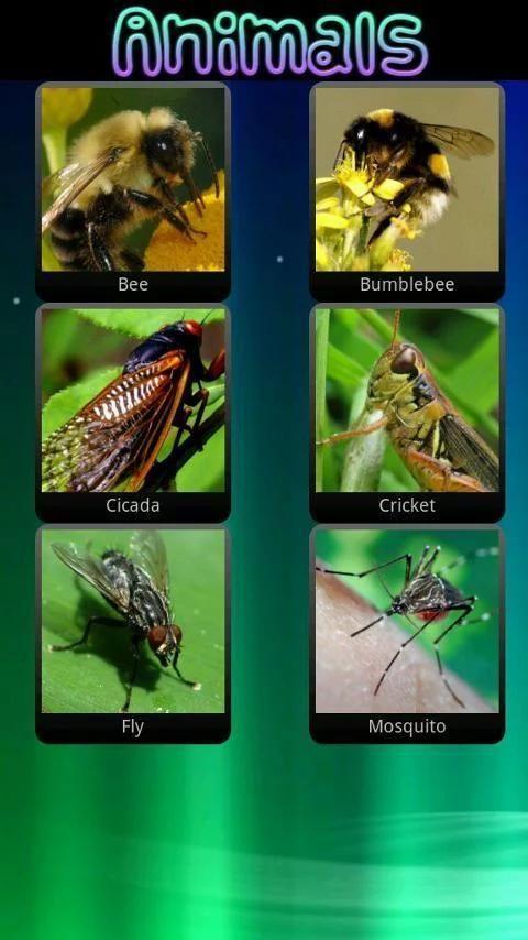 Звуки животных для детей 4 تصوير الشاشة