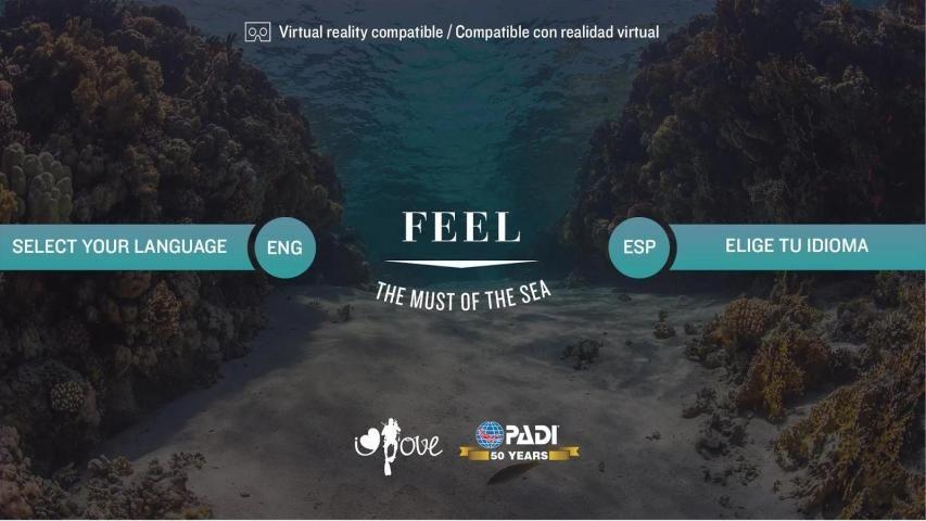 Feel - TheMustOfTheSea screenshot 9