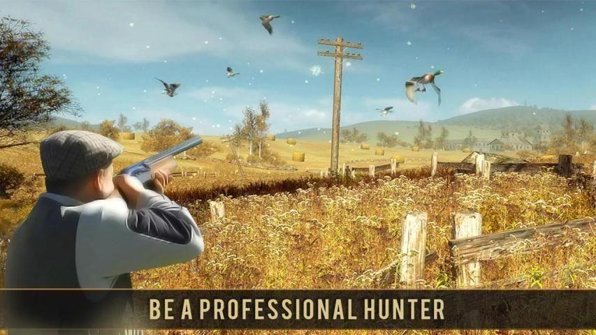 Wild Bird Sniper Hunting 4 تصوير الشاشة