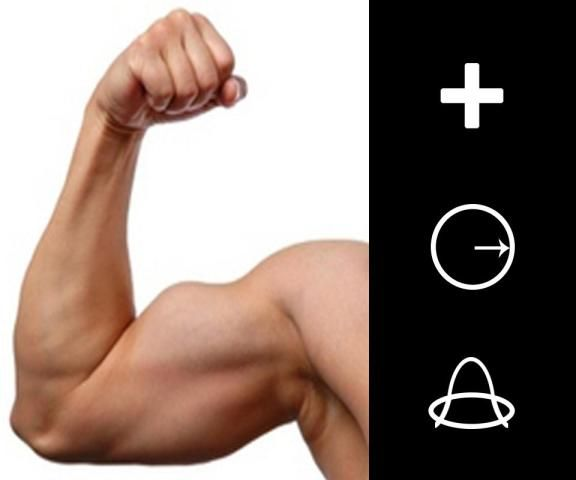Muscle Editor - Bodybuilding screenshot 2