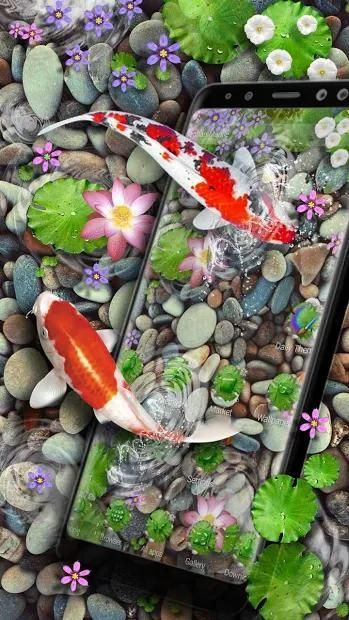 3D Koi Fish Theme and Animated Ripple Effect screenshot 4