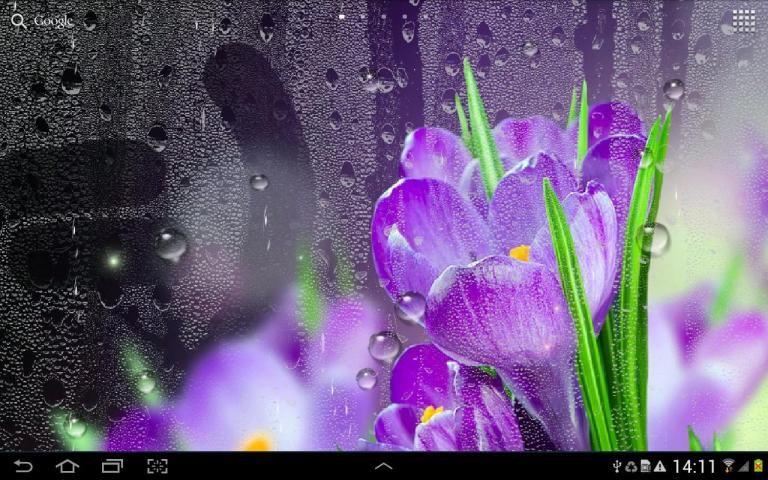 Rain Live Wallpaper 5 تصوير الشاشة