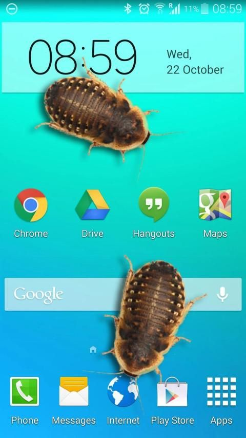 Bug in Phone funny joke 12 تصوير الشاشة