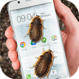 Bug in Phone funny joke أيقونة