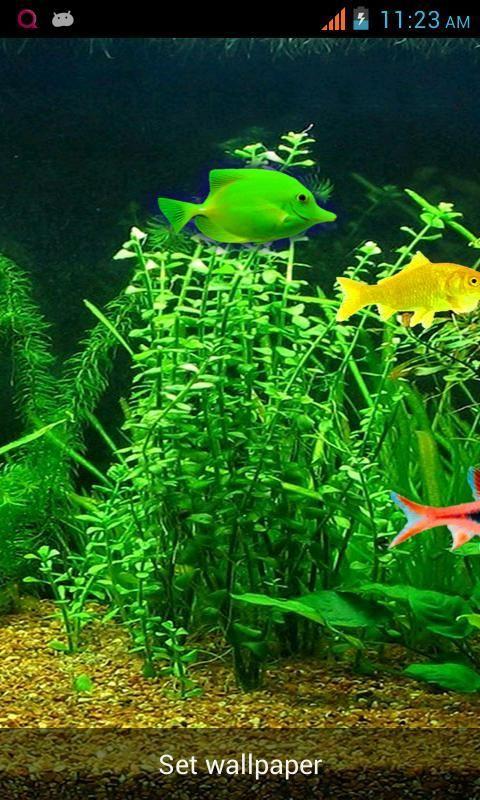 Aquarium Live Wallpaper! screenshot 4