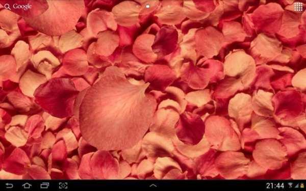 Petals 3D live wallpaper screenshot 1